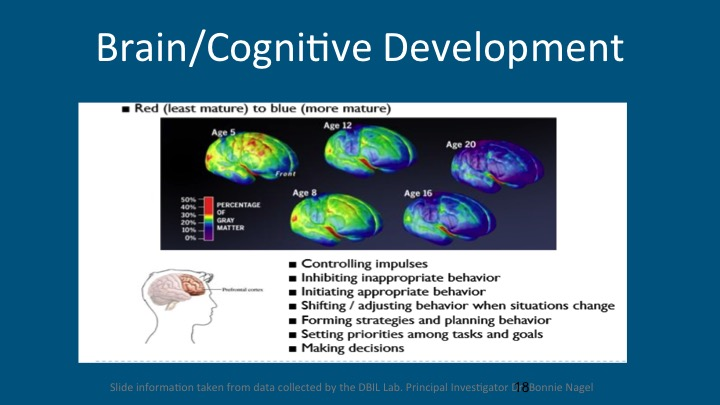 Activities to increase auditory memory photo 5