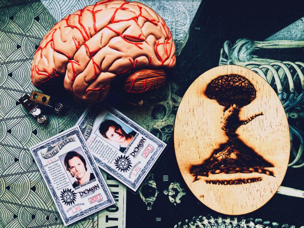 Carry on my wayward son – NW NOGGIN: Neuroscience outreach